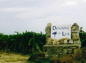 Daniel Richard est à l'origine du Domaine du Lys : 1er vignoble québécois en France